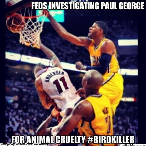 Paul George Memes - 31 best images about nba memes on pinterest funny