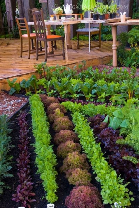 45 Interesting Vegetable Garden Ideas For Backyard Decoredo Vegetable Garden Menu