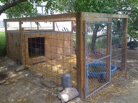 backyard ducks housing building a secure chicken enclosure this article is