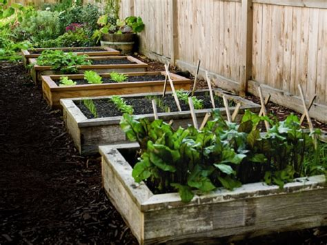 diy garden beds 15 beautiful diy raised garden bed projects our daily ideas