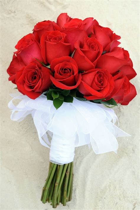 Bouquet Of Roses by Solid Bouquet With White Ribbon Stem Wrapping