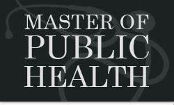 Mba And Mph Careers by And Global Health The Ultimate Guide Master