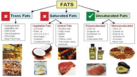 healthy fats saturated or unsaturated saturated cholesterol the calorie