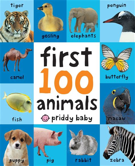 animal picture book 100 animals preschool learning book children