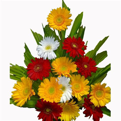 Order Flowers by Flower Delivery In Bangalore Winni