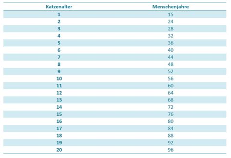 katzenjahre in menschenjahre tabelle katzenalter in menschenjahre umrechnen mit tabelle
