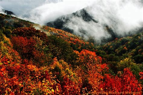 smoky mountain fall colors great smoky mountains fall foliage 32 smokyphotos