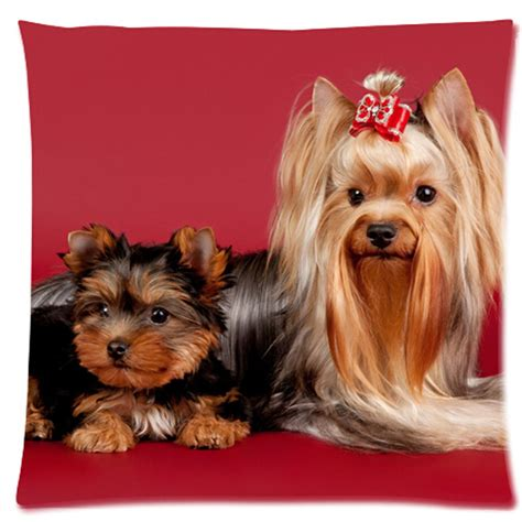 yorkie pillow cover terrier pillow cover top pet gifts