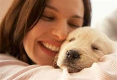 how to take care of puppies how help your to take care of puppies the dogs bone
