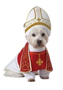 dogs halloween costume holy hound pet costume