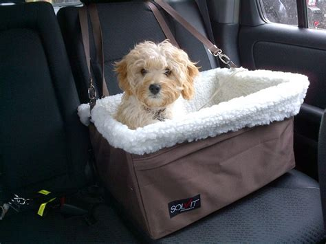 booster for dogs tagalong pet booster seat