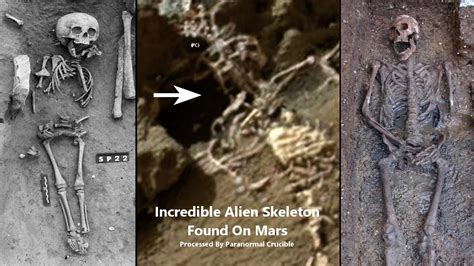 The Found human remains found on moon www pixshark images