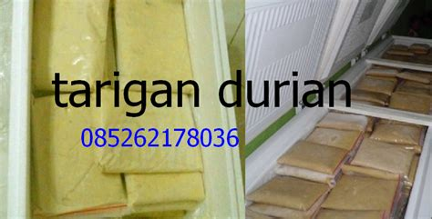 Daging Durian Murni tarigan durian