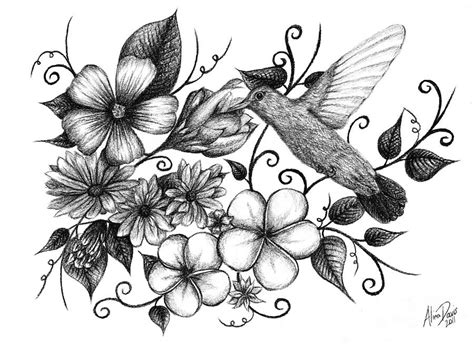 Metal Dragonfly Garden Art - hummingbird and floral sketch drawing by alina davis