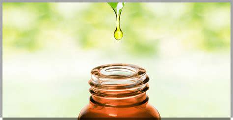 profumare casa profumare la casa in modo naturale ecco gli oli