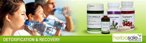 Detox Recovery Powder Dr Jeff Recommended For Liver by Detoxification Recovery Herba Sale Ltd