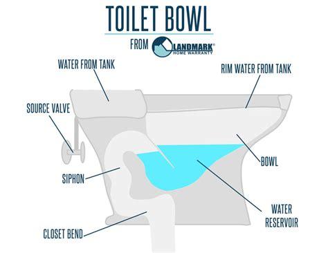 Toilet Seat Diagram