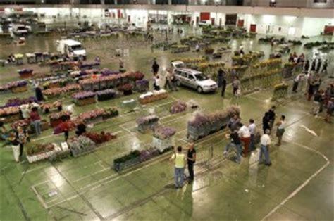 mercato dei fiori genova mercato fiori in liquidazione quot troppa concorrenza dall