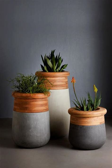 two plants in modern wooden pots plant pots pinterest plant your roots modern vessels design pulpdesign pulp