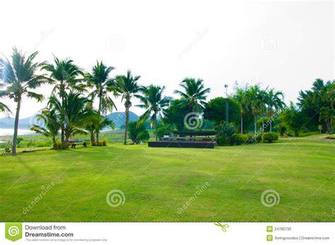green gardan stock photo image 24780730