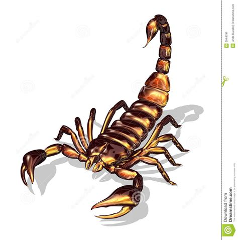 scorpion clipart scorpion stock illustrations vectors clipart 2 346