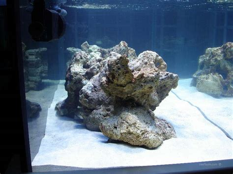 Live Rock Aquascape Designs by Reef Aquascaping Less Is More For Reef Tanks Reefbum