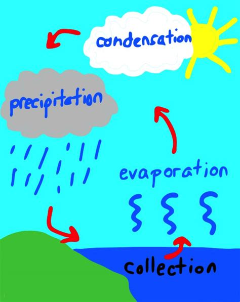 water cycle images 17 best images about water cycle on