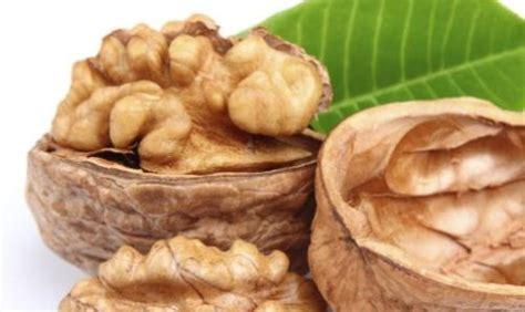 omega 3 alimenti lo contengono omega 3 benefici e alimenti lo contengono