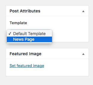add a custom post type template in wordpress 4 7 wp beaches