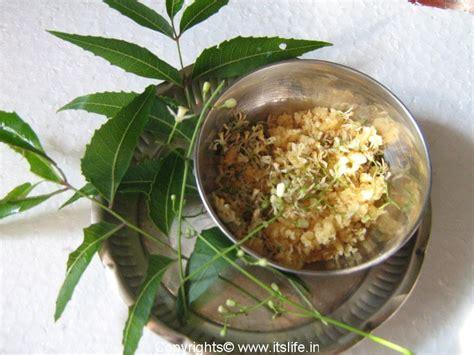 ugadi hindu new year ugadi festival hindu new year