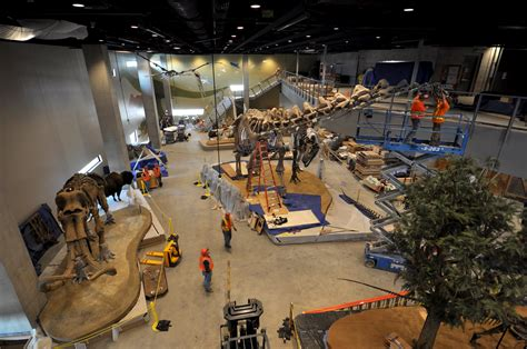 earthcam premieres time lapse of new perot museum of