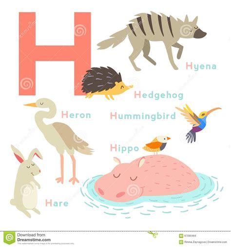 imagenes de animales por la letra v animales de la letra de h fijados alfabeto ingl 233 s