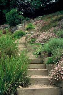 hillside landscaping 17 best ideas about hillside landscaping on