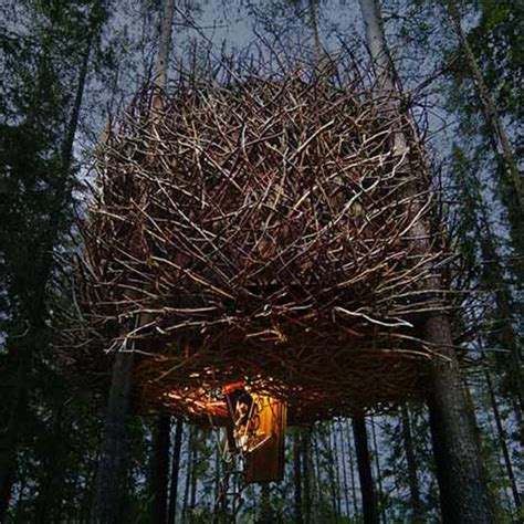 this tree house looks like a giant birds nest enpundit