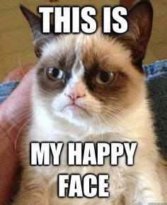 Grumpy Face Meme - grumpy cat returns by chefpam830 on pinterest funny