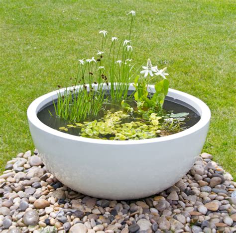Planter Pond by Semi Shade Pond In A Pot Kit With White Fibreglass 72cm