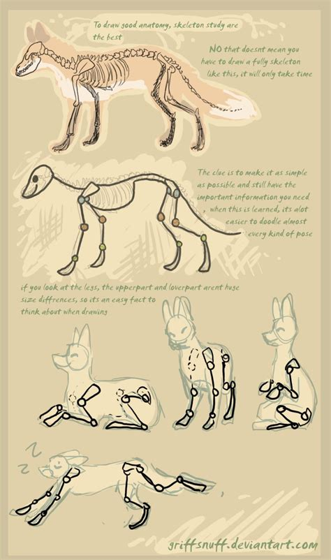 how to use doodle tutorial fox doodle tutorial by griffsnuff on deviantart