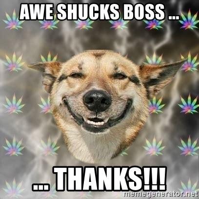 Awe Meme - awe shucks boss thanks stoner dog meme