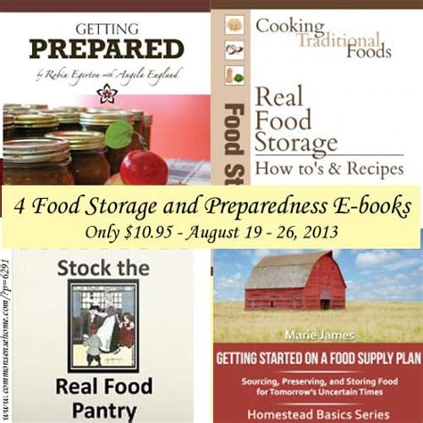 the before the a novel of preparedness and survival american sundown series books food storage and preparedness e book sale self sufficiency