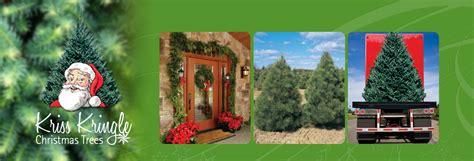 kris kringle trees trees web site name