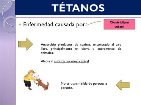 cadena epidemiologica tetanos t 233 tanos vigilancia epidemiologica