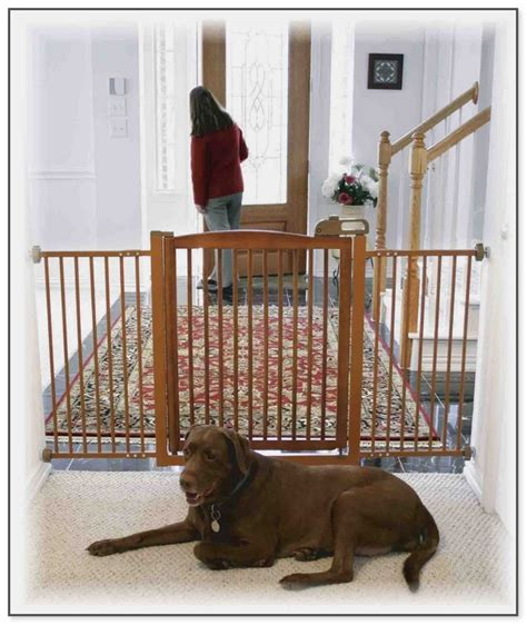 baby gates for dogs gates for small dogs in house 28 images ideas puppy gate with door indoor pet