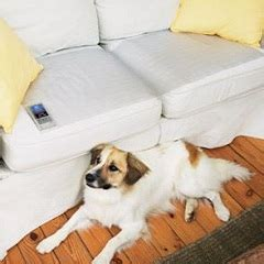 mats for dogs or cats gift ideas