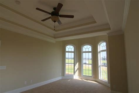 Tray Ceilings Paint Ideas by Ideas For Painting A Tray Ceiling