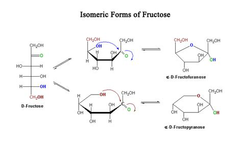 d isomer carbohydrates file fructose isomers jpg wikimedia commons