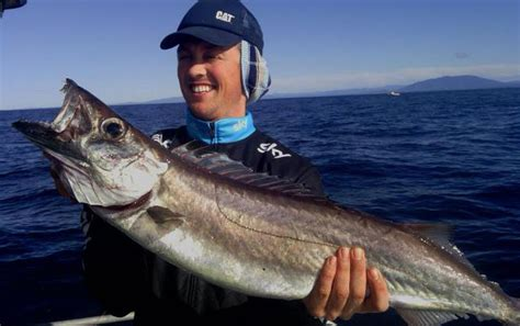 fishing boat hire narooma gem fish narooma narooma tours charter fish narooma