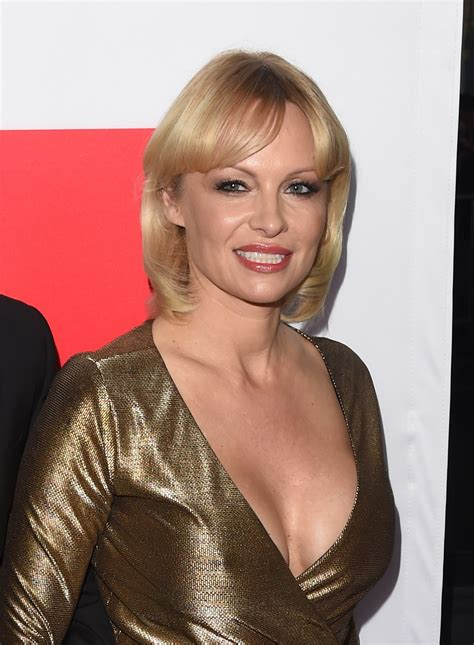 pamela anderson requests meeting with vladimir putin to