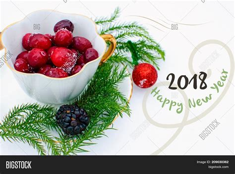 new year 2018 food delivery new year food delivery 2018 28 images animals wildlife