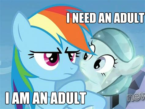 I Need An Adult Meme - i need an adult meme