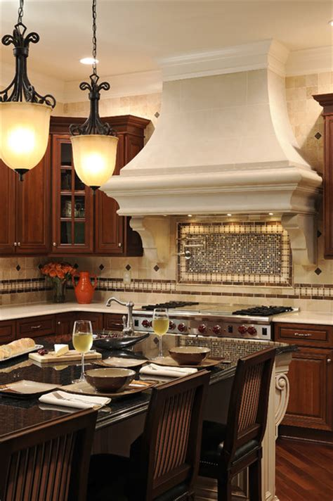 focal kitchen or bust traditional tietjen kitchen focal point traditional kitchen dc